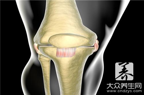 骨愈合过程