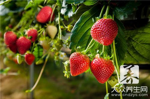 草莓可以放冰箱冷藏吗-第1张