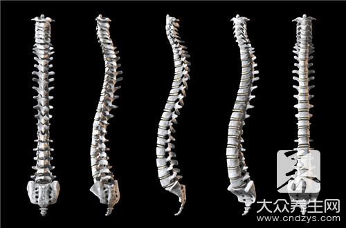 后脊椎骨有一节按着疼-第2张