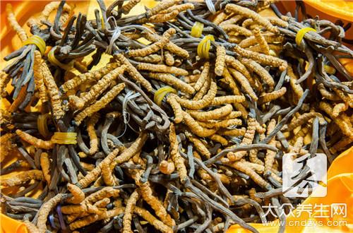 鲜虫草花的做法怎么做呢?