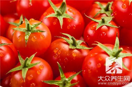 晚上吃番茄好吗