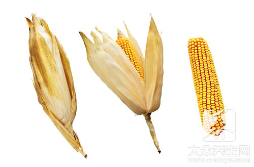 吃玉米拉肚子