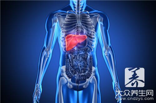 阿奇霉素对肝脏的影响-第3张