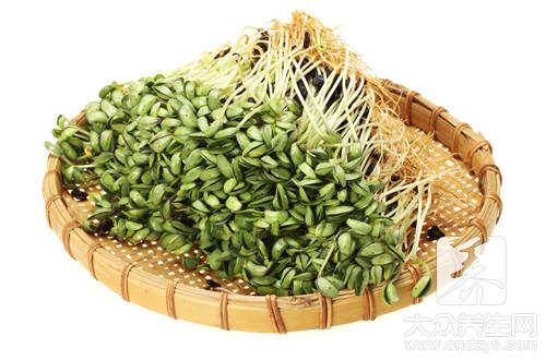 豆芽是豆制品吗