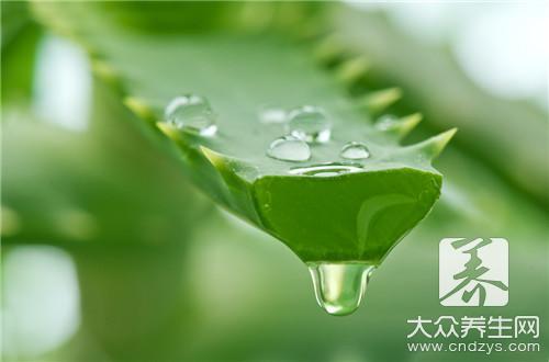 芦荟甘油的作用与功效是什么?