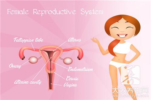 中医自测输卵管通不通-第3张