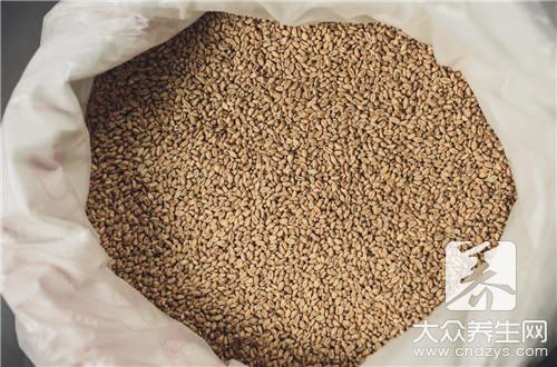 大小薏米的功效区别是什么?