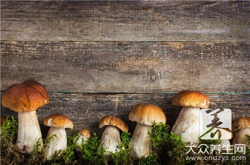 拉肚子能吃蘑菇吗