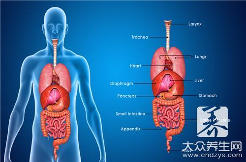 胆囊炎用什么药效果好