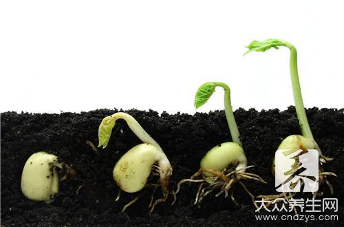 哪些因素会影响我们的生长发育?应该如何避免-第2张
