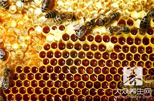 野生蜂巢的作用与功效-第3张