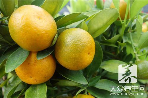 金橘干的功效与作用-第1张