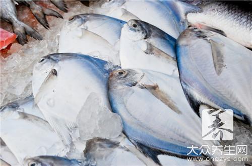 吃鱼可以补肾吗?